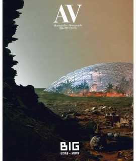 BIG 2013-2019 AV MONOGRAFIAS 211