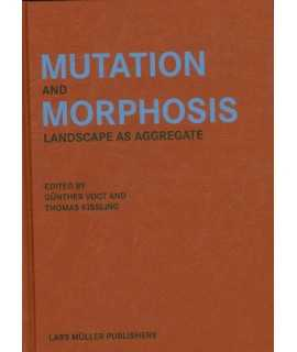 Mutation and Morphosis Landscape as Aggregate