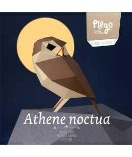 Pájaro de papel - Athene Noctua