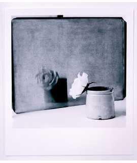 Libro de retratos,bellas fotografias de Rosa Feliu comentadas por Manolo Laguillo y Patricio Velez. Edición limitada