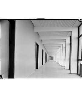 F. Català-Roca. Facultad de Economía y Empresa, Universitat de Barcelona, Barcelona (1954-1961)