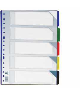 Separador de plàstic transparent, foli. 5 posicions