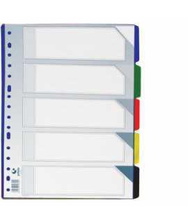 Separador de plàstic transparent, foli. 10 posicions