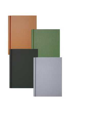 Carpeta amb solapes, 1 goma. Mida: 33x24 cm. Color verd